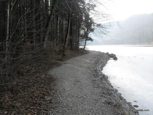 lago alpsee baviera