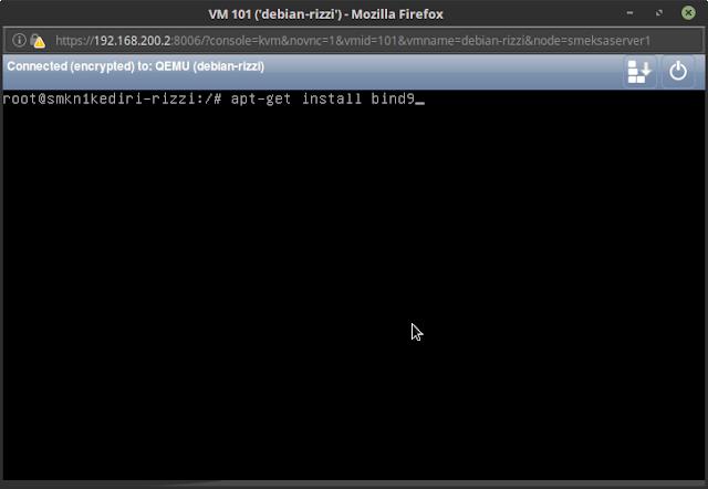 apt-get install bind9