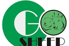 Lowongan Kerja Marketing Executive Gosheep Indonesia