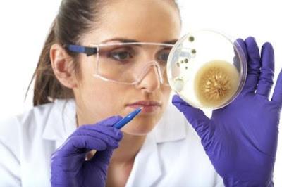 Os Micróbios em nossas vidas