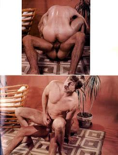 www coqnu com erotica agen