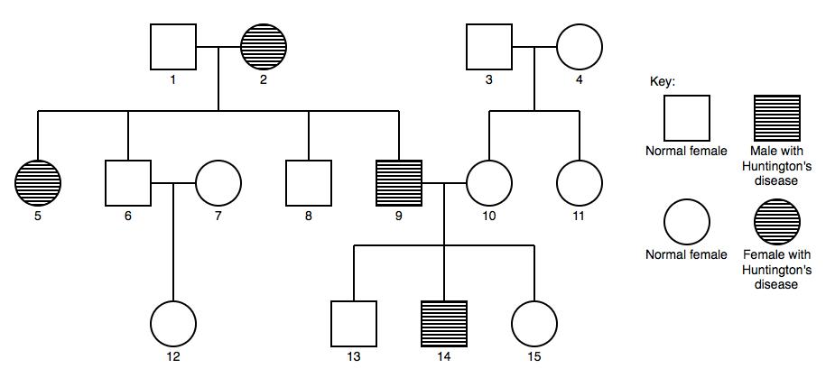 公式化解決genetic problems (Type 5 examples part 2)