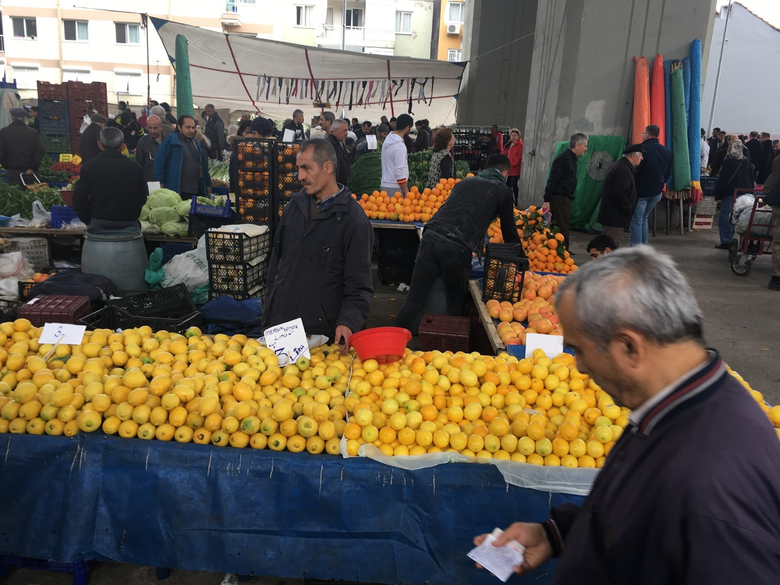 LeeZe visits Izmir Sunday farmer's market. Citrus sellers