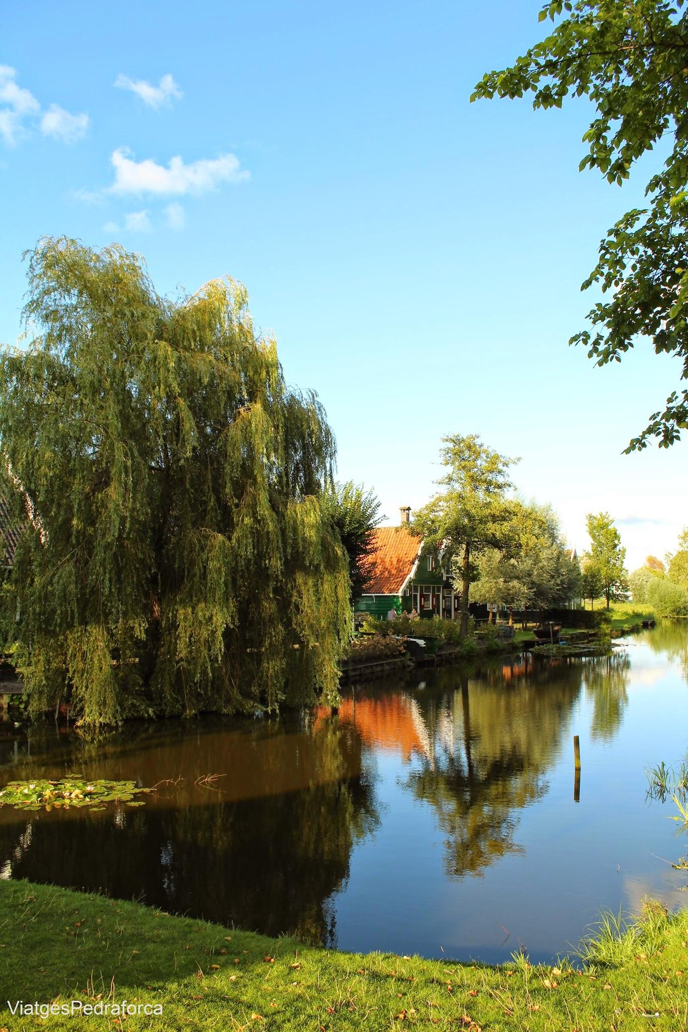 Zaanse Schans Holanda Països Baixos Amsterdam