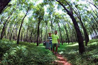 YUK Lestarikan Lingkungan dengan Menjaga Hutan Sosial
