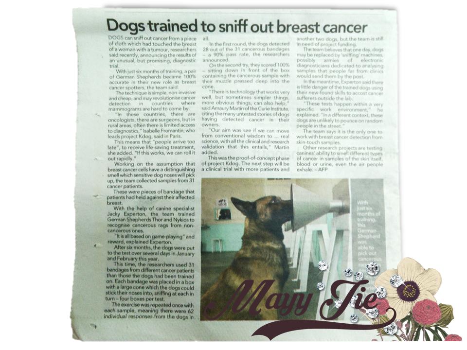 menggunakan anjing untuk mengesan breast cancer
