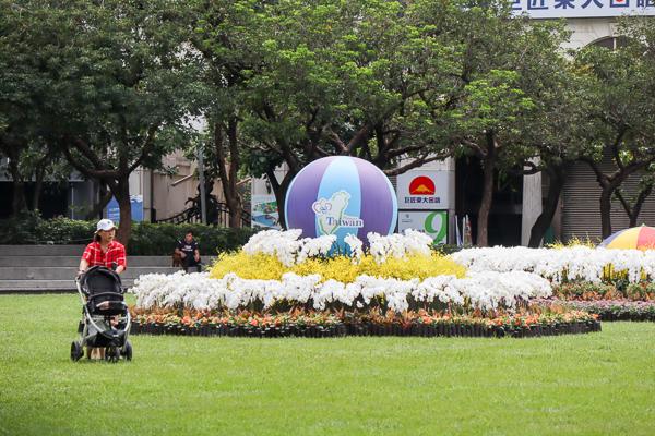 台中市民廣場「花現美好綻放幸福」花卉推廣活動,免費賞花拍照