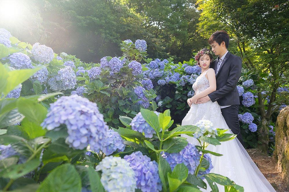 自助婚紗 | 婚紗 | 自主婚紗 | 台北婚紗 | 高家繡球花園 | 冷水坑吊橋 | 生態池 |