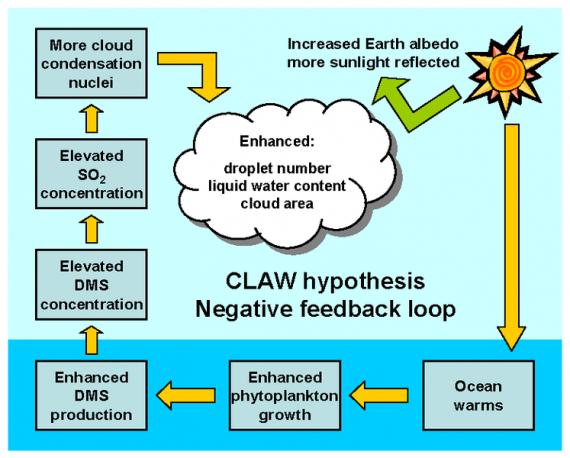Ternyata Bakteri Yang Menjaga Kestabilan Iklim Planet Bumi