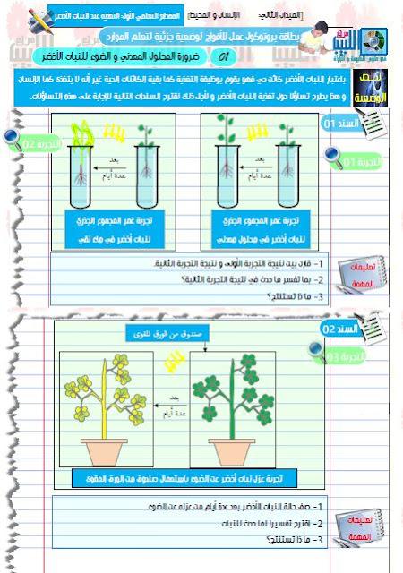 يروتوكولات العمل الفوجي لمقطع التغذية عند النبات الأخضر للاستاذ حمو الهواري