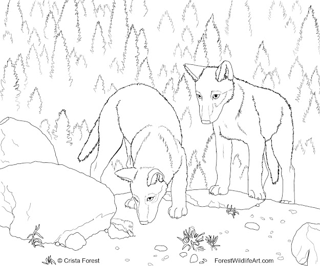 Cute Wolf Coloring Pages  Forest Wildlife Art Wolf Pups Coloring Book Page