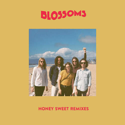 Blossoms - Honey Sweet (Remixes)