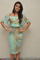 Nikki Galrani in Cute Dress Dress At Marakathamani Success Meet ~  Exclusive 020.JPG