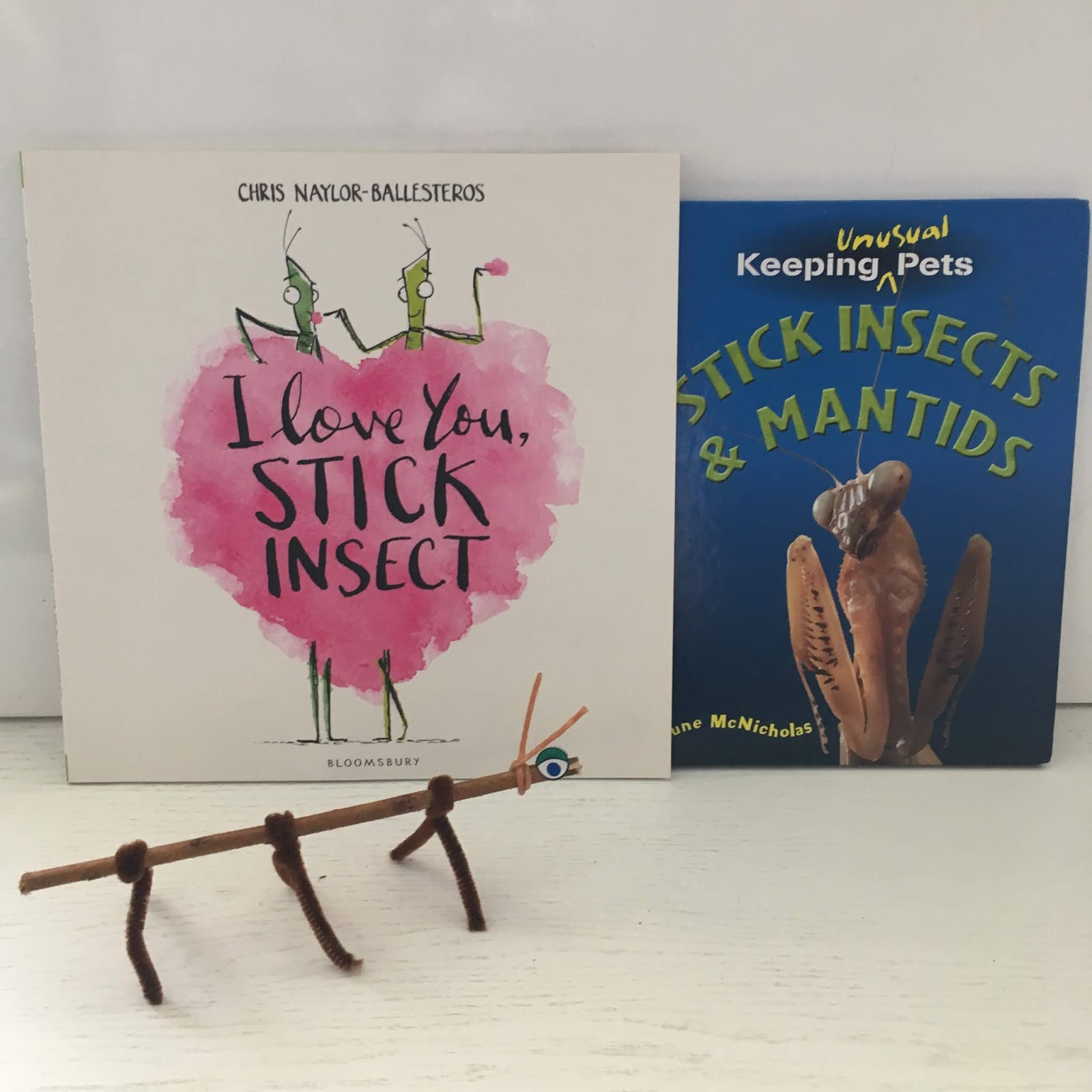 Space On The Bookshelf I Love You Stick Insect By Chris