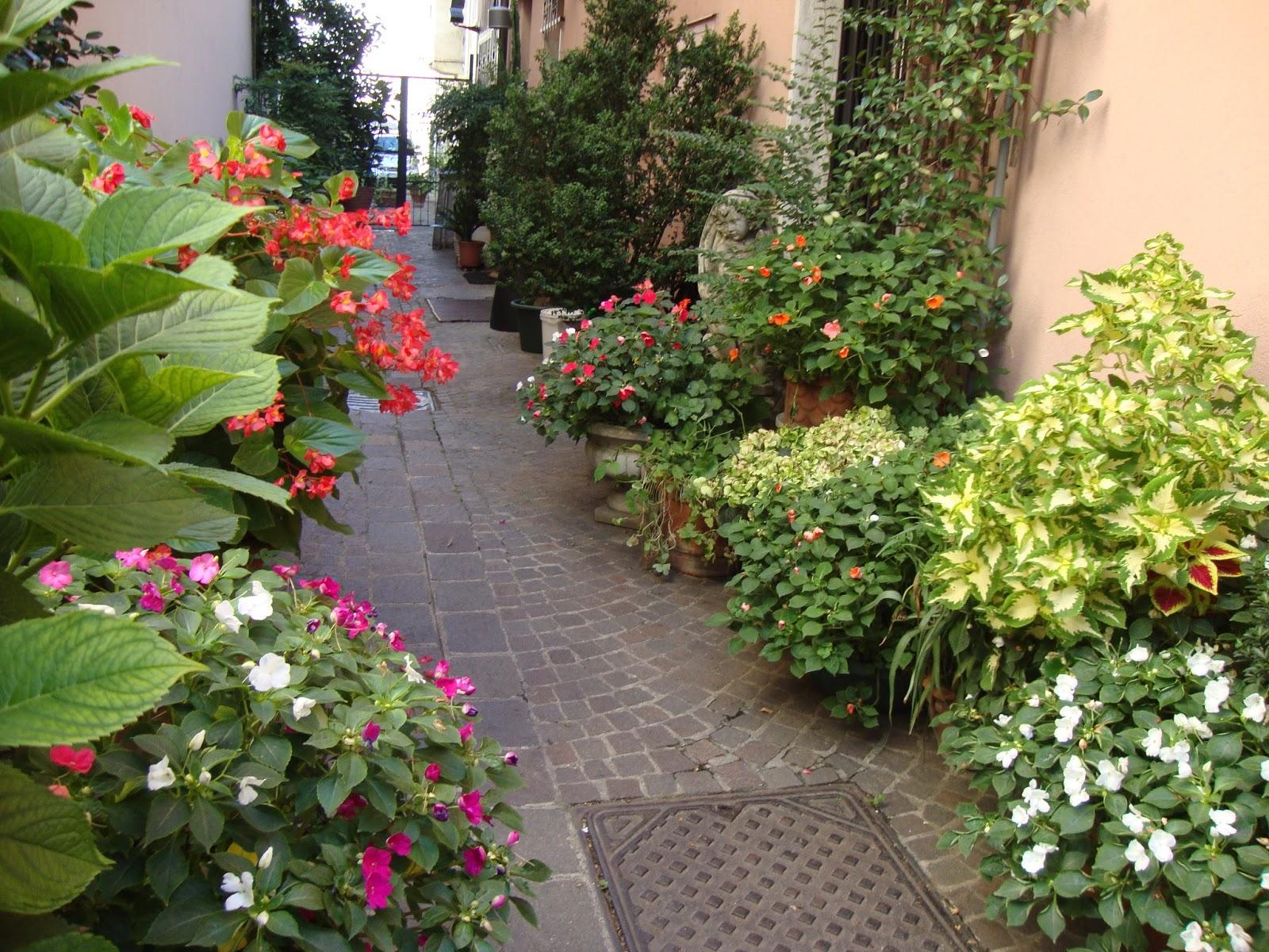 Un piccolo giardino in citt un piccolo giardino in vasi - Piccolo giardino ...