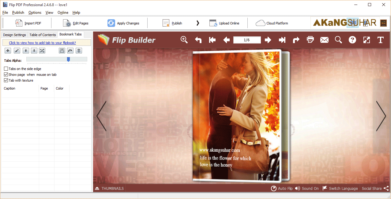 Download FlipBuilder Flip PDF Professional 2.4.6.8 Full Version