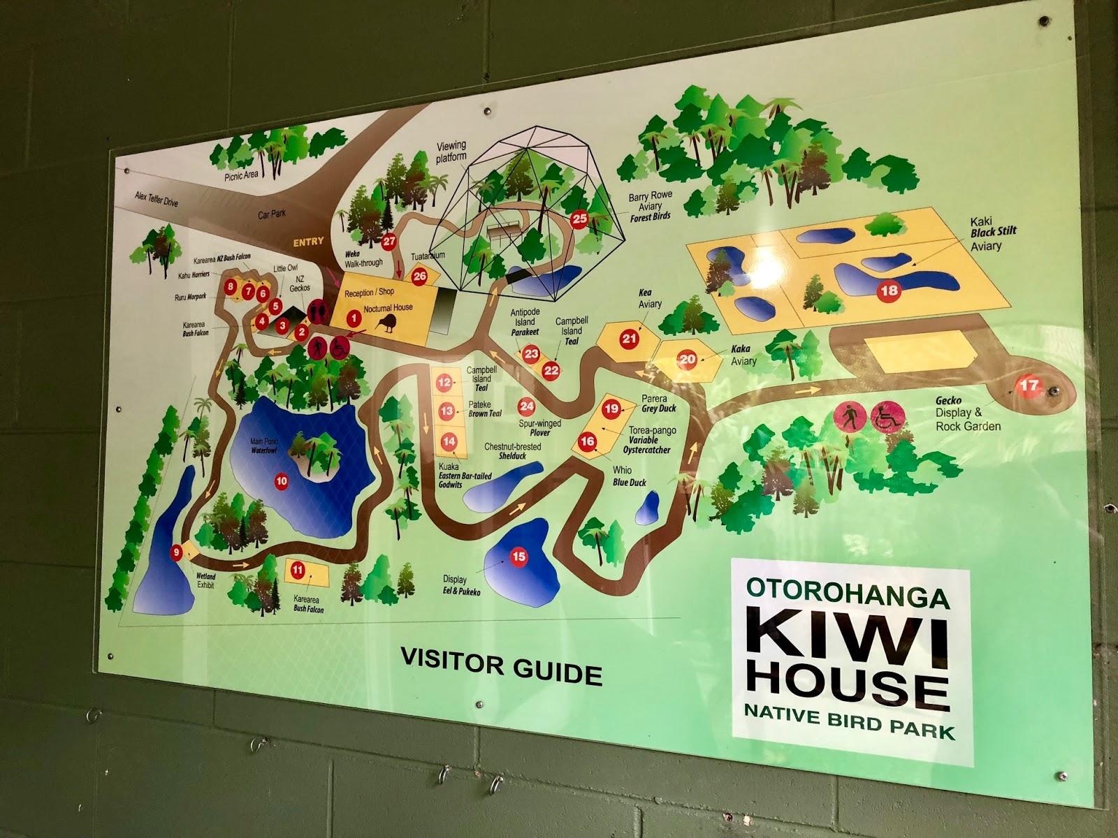 Kiwi House New Zealand Best Place To See Kiwis