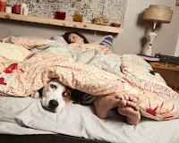 Downward Dog Series Allison Tolman and Samm Hodges Image 2 (2)