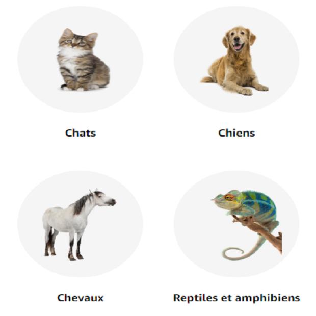 ANIMALERIE - LA BOUTIQUE