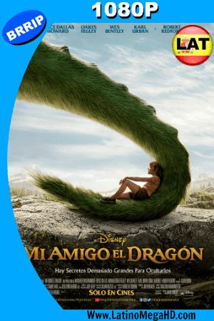 Mi Amigo el Dragon (2016) Latino HD 1080P ()