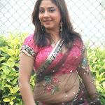 South Indian Actress Meenakshi Kailash Hot Photos in Transparent saree