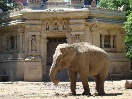 Zoológico de Palermo nos Bosques Palermo em Buenos Aires