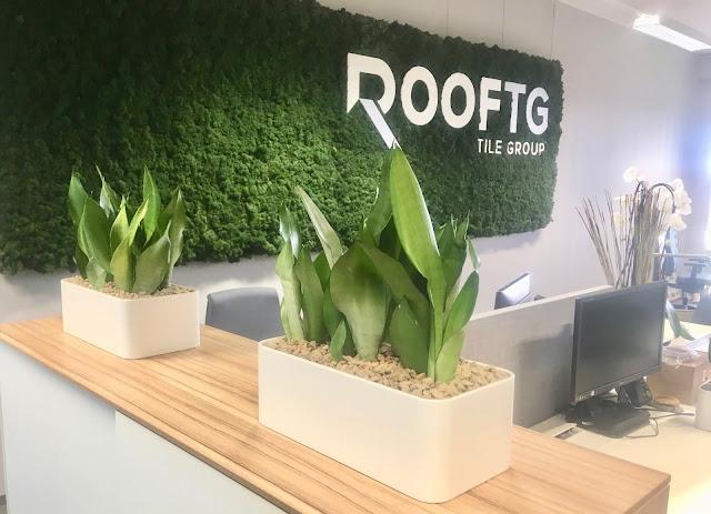 Moswand of mosmuur voor bedrijf kantoor bedrijven in Limburg Vlaams-Brabant Antwerpen Brussel prijzen op aanvraag. groene wand plantenwand