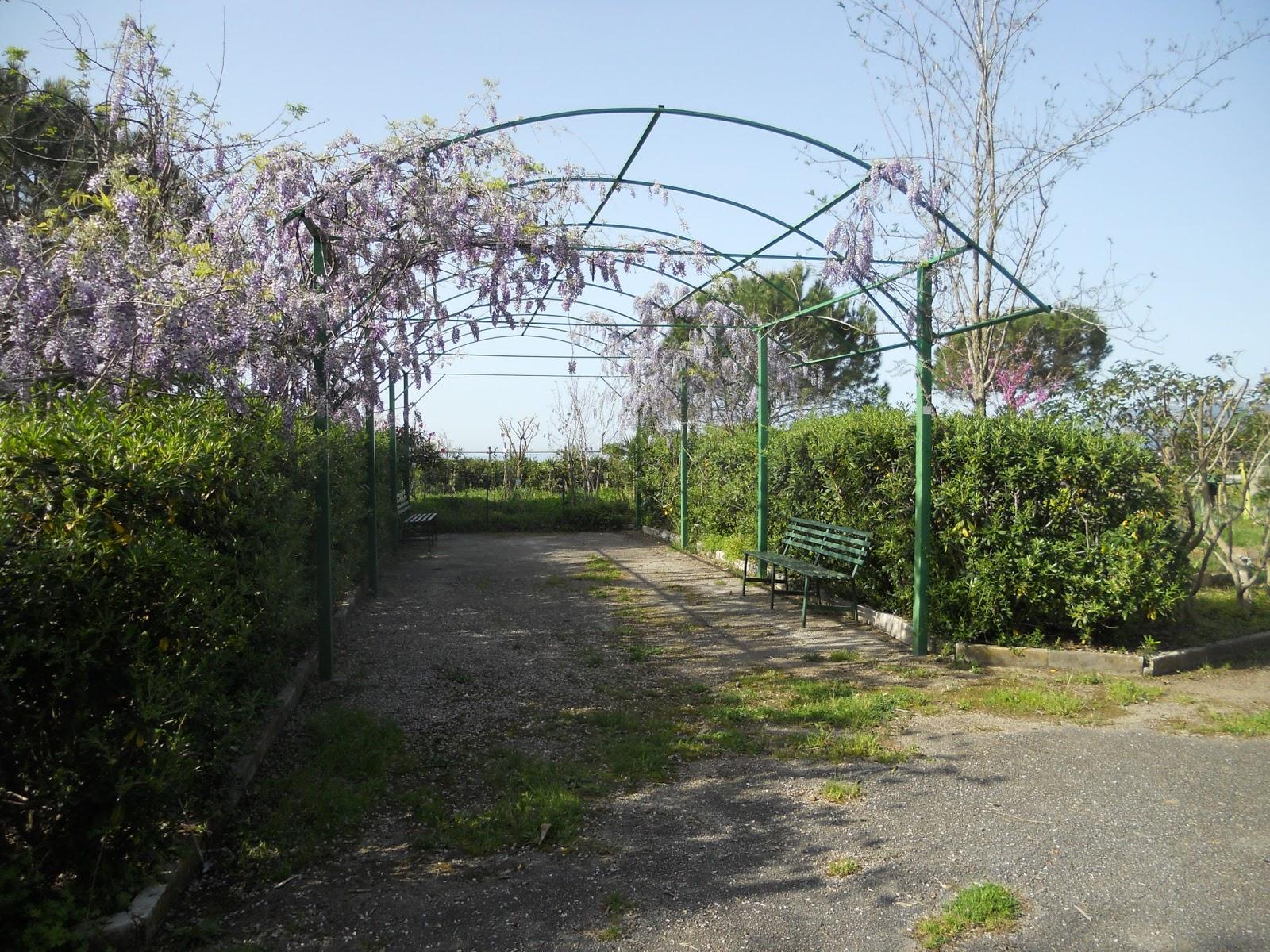 Comitato Parco Marinella ONLUS - VILLAMMARE