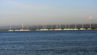 Catamarans pour Saona