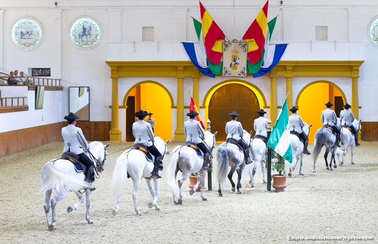 Andalusian kuninkaallinen hevoskoulu Jerez_Andalusian Royal Equestrian School Jerez_21