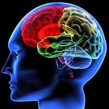 http://www.indoblog.me/2014/08/cara-meningkatkan-daya-ingat.html
