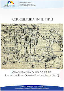 Chaquitaclla o Arado de Pie (Instrumental Inca)