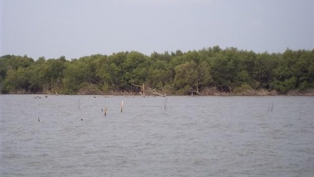 pantai Muara beting bekasi