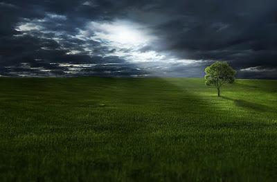 paisaje con destello