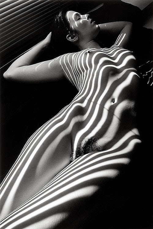 Применять фото черно белая эротика крупная шедевры