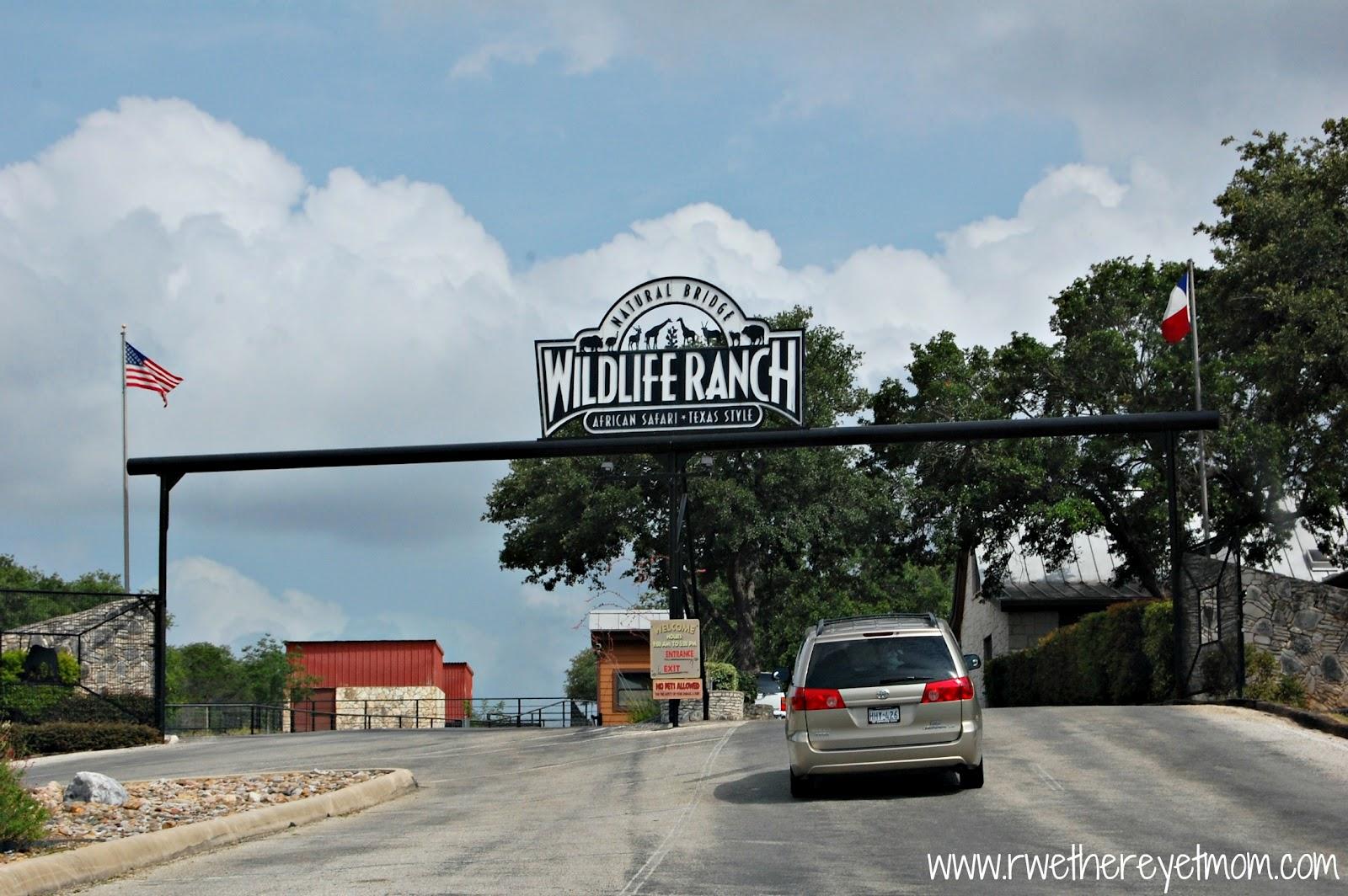 Natural Bridge Wildlife Ranch San Antonio Tx R We