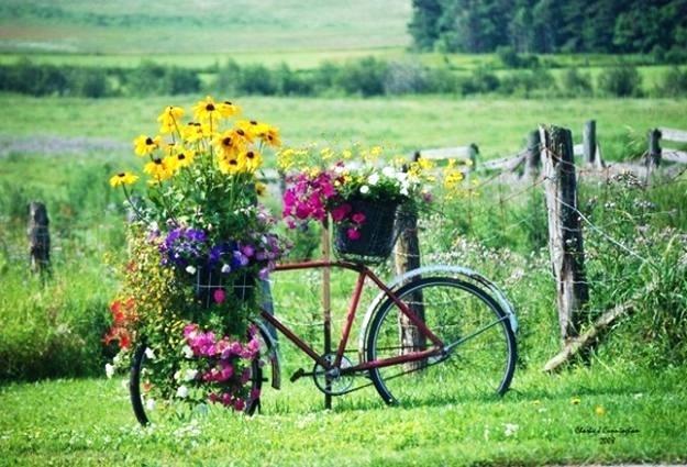 Como Decorar Un Jardin Con Plantas Y Flores Perfect With Como - Como-decorar-un-jardin-con-plantas-y-flores