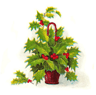 Holly Berries Clip Art