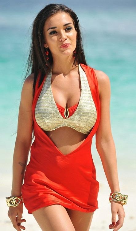 Amy Jackson Bikini Pictures