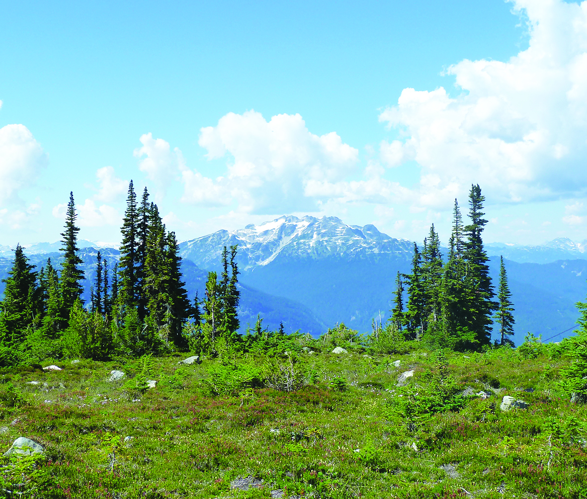 On Top Of The World Whistler Unstitched Amp Fabulous
