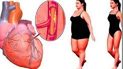Conheça a bebida que ajuda a desobstruir artérias e previne doenças cardíacas