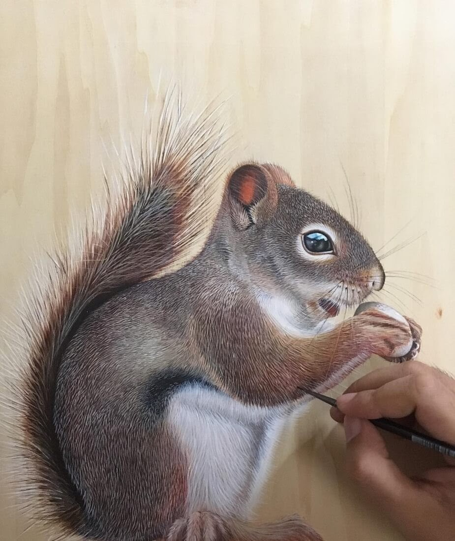 04-Red-Squirrel-Ivan-Hoo-Domestic-and-Wild-Animal-drawings-and-paintings-www-designstack-co