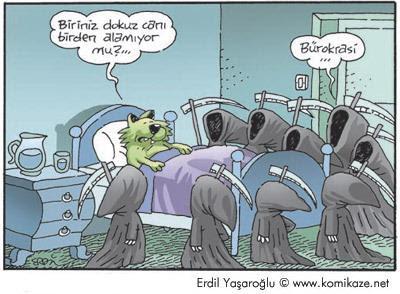 bürokrasi isveç karikatür