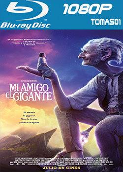 Mi amigo el gigante (2016) BDRip m1080p