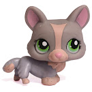 Littlest Pet Shop Pet Pairs Corgi (#1486) Pet