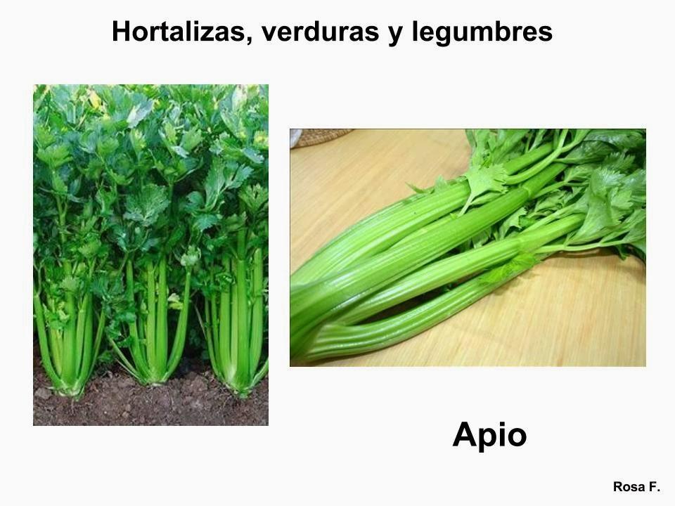 Maestra De Primaria Hortalizas Verduras Y Legumbres Para Imprimir Vocabulario En Imágenes