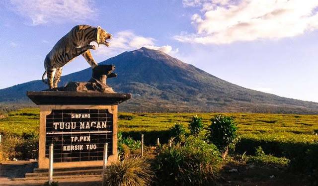 Gunung berapi tertinggi di indonesia adalah gunung kerinci dengan ketinggian 3.805 MDPL