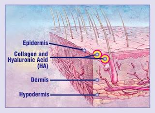 acido hialuronico efectos en la piel