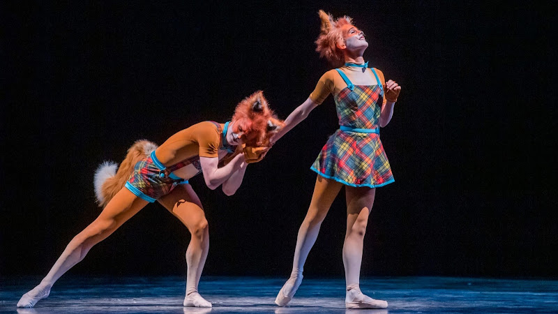 The Cunning Little Vixen/The Two Pigeons, Royal Opera House | Review