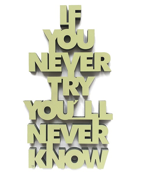 http://www.shabby-style.de/3d-schrift-if-you-never-try-you-ll-never-know